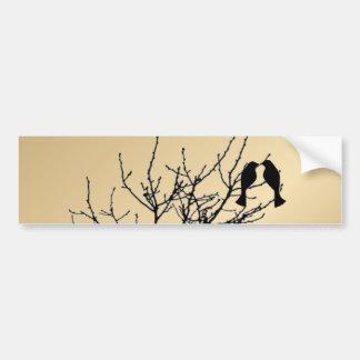 modern love birds rustic country wedding bumper sticker