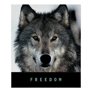 Modern Motivational Freedom Wolf Poster Print