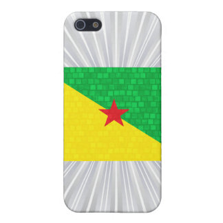 Modern Pattern Guianese Flag Covers For iPhone 5