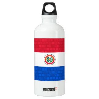 Modern Pattern Paraguayan Flag Aluminum Water Bottle