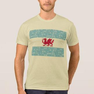 Modern Pattern Patagonian Flag T-Shirt