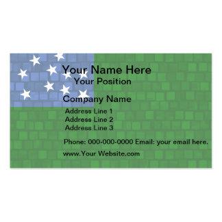 Modern Pattern Vermont Flag Business Card