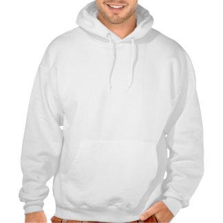 Modern peach and moss horizontal stripes hooded sweatshirt