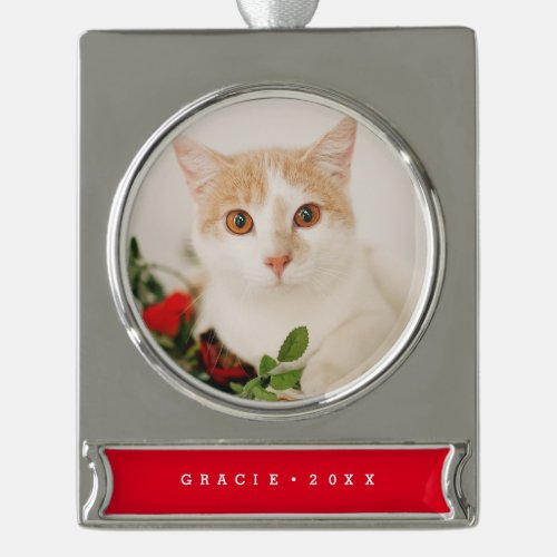 Modern Pet Holiday Ornament