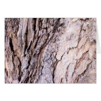 Modern Red Gumtree bark design Cards