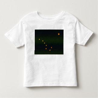 Modern Stripped Alaskan flag Toddler T-shirt