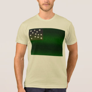 Modern Stripped Vermont flag T-Shirt
