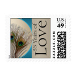 Modern Taupe Aqua Peacock Anniversary Love Stamp