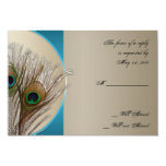 "Modern Taupe Aqua Peacock Feather Response Card 3.5"" X 5"" Invitation Card"
