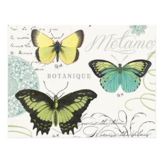 modern vintage botanical butterfiles postcard