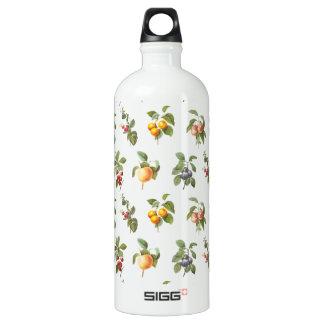 modern vintage botanical fruits aluminum water bottle