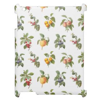modern vintage botanical fruits iPad cover