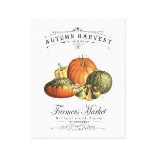 modern vintage fall gourds and pumpkin canvas print