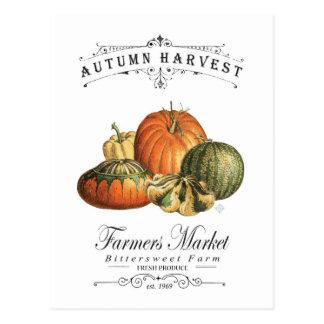 modern vintage fall gourds and pumpkin postcard