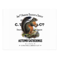 modern vintage fall squirrel postcard