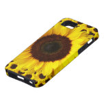 Modern vintage floral sunflower for iphone5 case iPhone 5 cases
