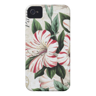 modern vintage french amarylis iPhone 4 cover