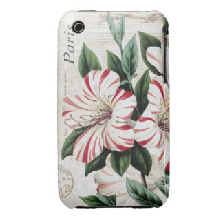 modern vintage french amarylis iPhone 3 covers