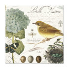 modern vintage French bird and nest Canvas Print