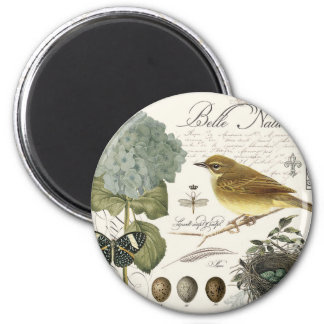 modern vintage French bird and nest Magnet