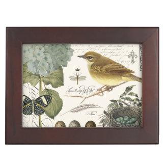 modern vintage French bird and nest Keepsake Box