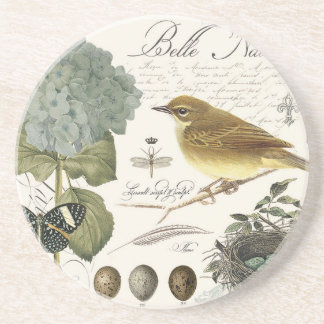 modern vintage French bird and nest Sandstone Coaster