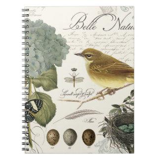 modern vintage French bird and nest Spiral Notebook