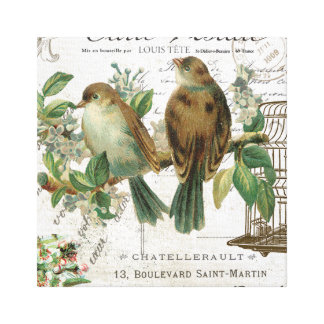 Modern Vintage French birds and birdcage Canvas Print