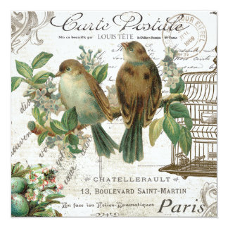 Modern Vintage French birds and birdcage Card