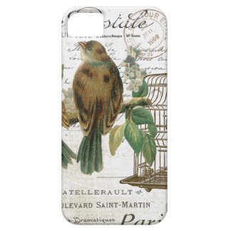 Modern Vintage French birds and birdcage iPhone SE/5/5s Case