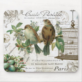 Modern Vintage French birds and birdcage Mouse Pad