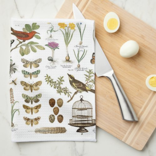 ... Botanical Birds And Flowers Kitchen Towels · Butterflies ...