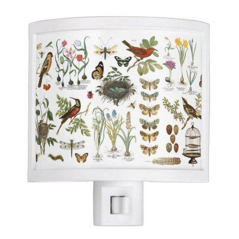 modern vintage french botanical birds and flowers night light