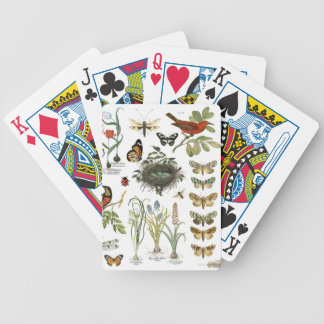 modern vintage french botanical birds and flowers bicycle playing cards