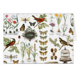 modern vintage french botanical birds and flowers stationery note card