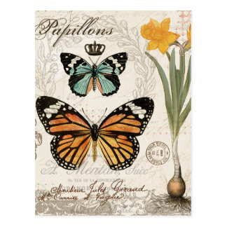 Modern vintage french butterflies postcard