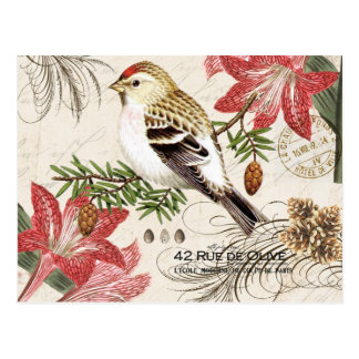 Modern vintage French Christmas bird postcard