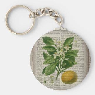 modern vintage french country botanical art orange keychain