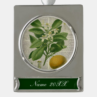 modern vintage french country botanical art orange silver plated banner ornament