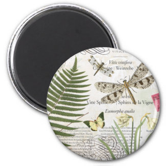 modern vintage french dragonfly 2 inch round magnet