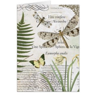 modern vintage french dragonfly card