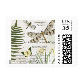 modern vintage french dragonfly postage