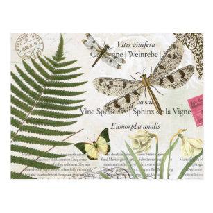 2ce587ce1a1 modern vintage french dragonfly postcard