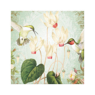 Modern Vintage French Hummingbirds Gallery Wrap Canvas