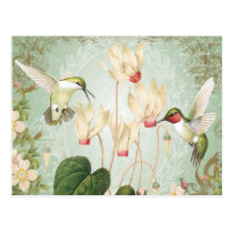 Modern Vintage French Hummingbirds Postcard