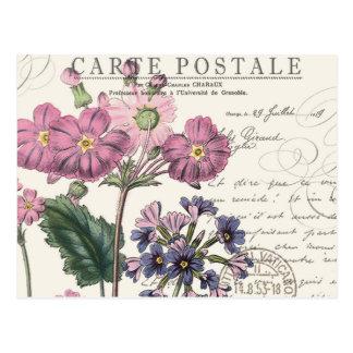 modern vintage french lavender floral postcard