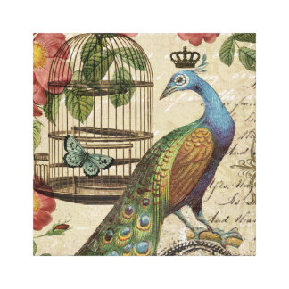 modern vintage french peacock canvas print