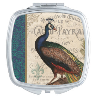 modern vintage french peacock mirror for makeup