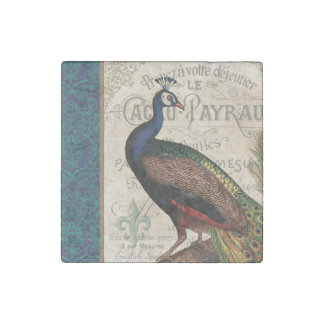 modern vintage french peacock stone magnet