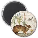 modern vintage french rabbit in the garden 2 inch round magnet